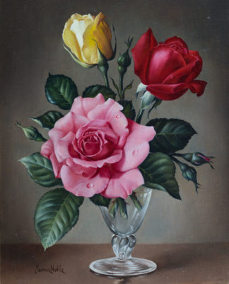 Mixed Roses by James Noble