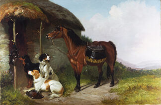 Setters and Game by COLIN GRAEME ROE